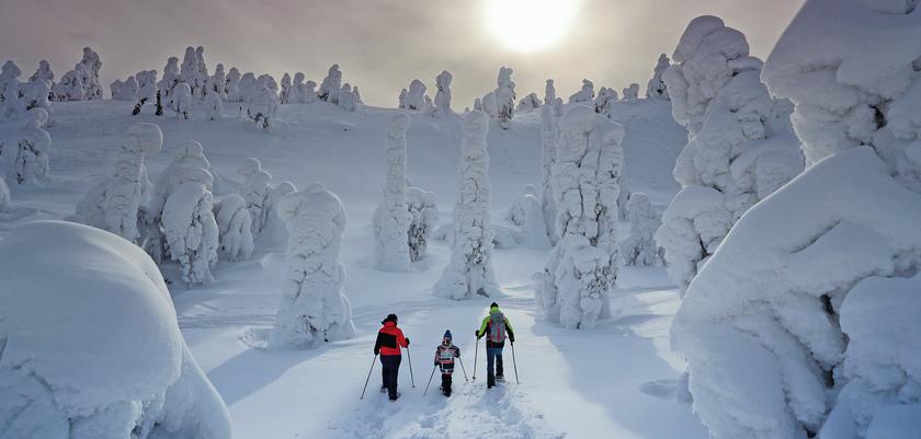 Finland_Levi_Snowshoeing.jpg
